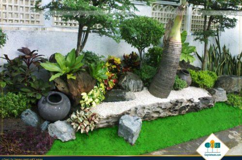 Những lưu ý về luật ngũ hành trong thiết kế sân vườn tiểu cảnh