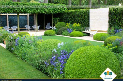6 cách làm để có một sân vườn đẹp như ý